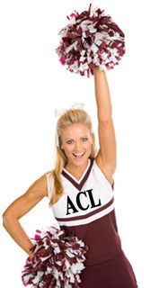 Acl 2010 CHeerleader 2